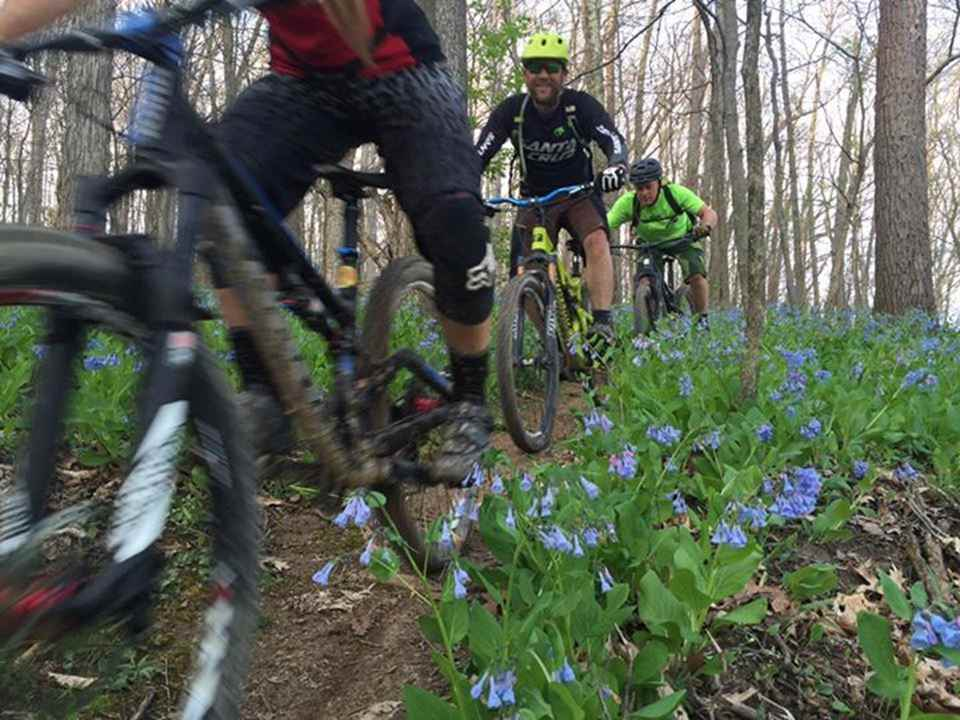 Appalachia Outdoor Adventures (AOA) Mountain Bike Trail at McGraw Edison Recreational Area