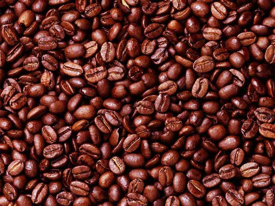 Starbucks - Northpointe