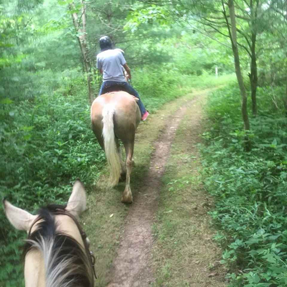 Equestrian Trail at Dillon State Park